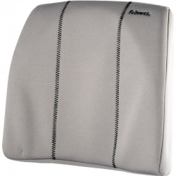 Support dorsal fin Smart Suites 2
