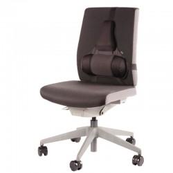 Support dorsal Premium Professional Series™2
