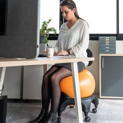 Chaise ergonomique Confort avec ballon Tonic Chair® 4
